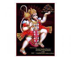 +91-9983874364 Love Marriage Specialist Astrologer